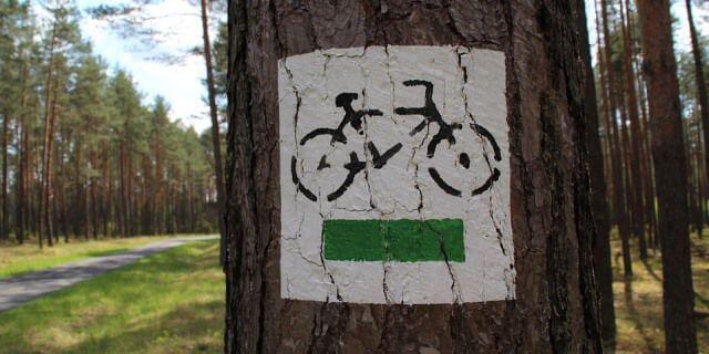 Una de las rutas en bici señalizada en un árbol.