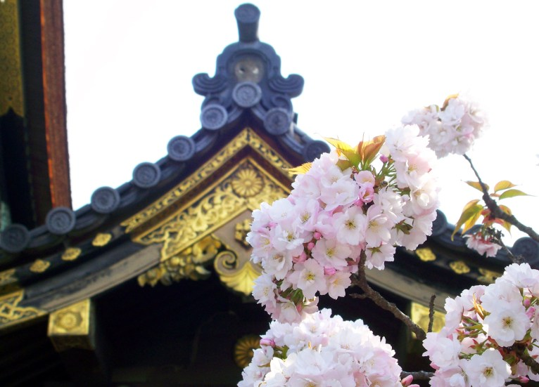 Nijo Castle, Kyoto Japan