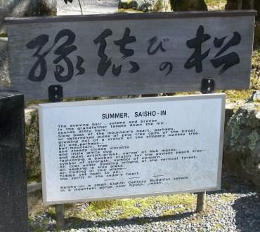Summer Saisho In, Kyoto Japan