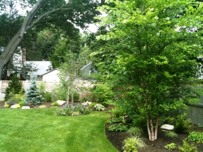 Backyard Design For New Construction Terrascapes