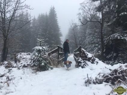 Basset-Snow-Ardennes
