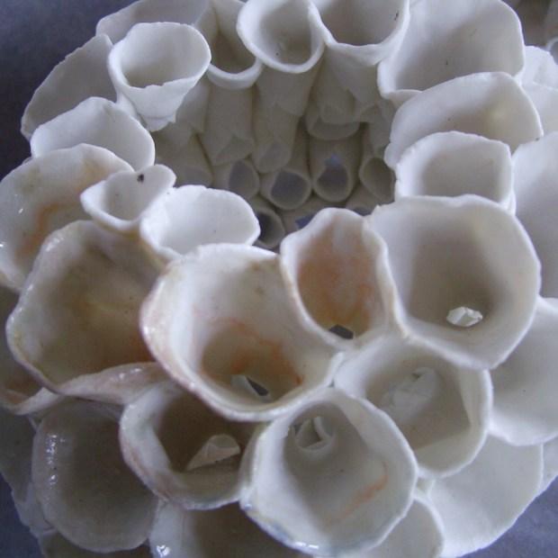 Petite echinide 4   Manon Berthellot   Petite échinide   Produit   200,00€   6496   Concrétion céramique , Pièce unique   Manon Berthellot   Terre et Terres   10 décembre 2020