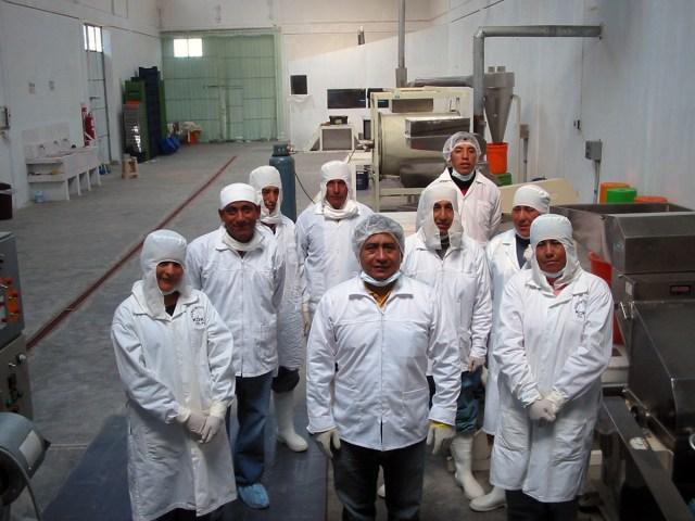 équipe responsable de la fabrication de la maca