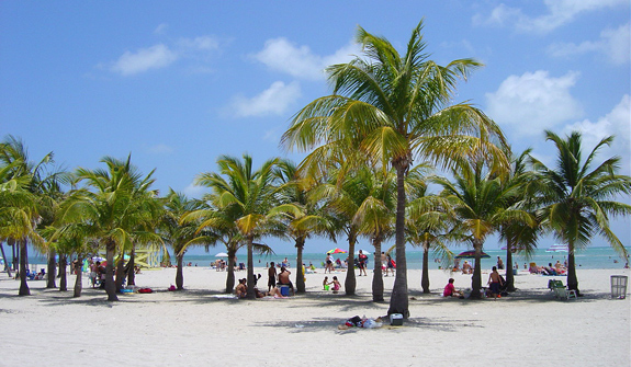 White Collar Beach on Biscayne Island, Key Biscayne, FL