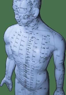 Les méridiens et l'acupuncture en Médecine Traditionnelle Chinoise