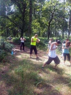 Cours de Qi Gong en forêt avec Terre d'Asie lors du stage d'été