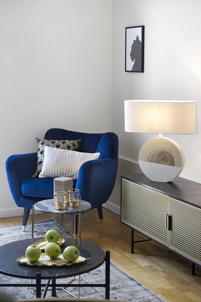 muebles contemporáneos en decoración de apartamento