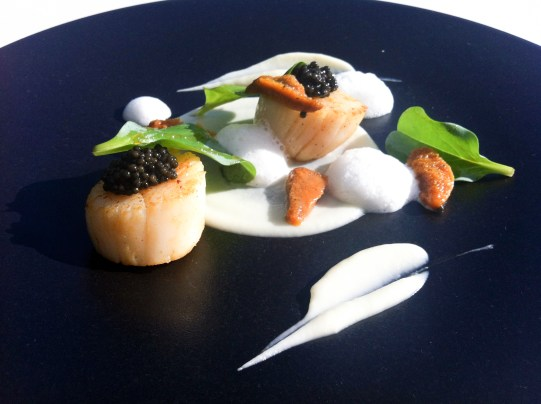 Coquille st Jacques caviar