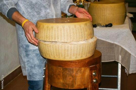 Parmigiano Regiano découpe de la meule