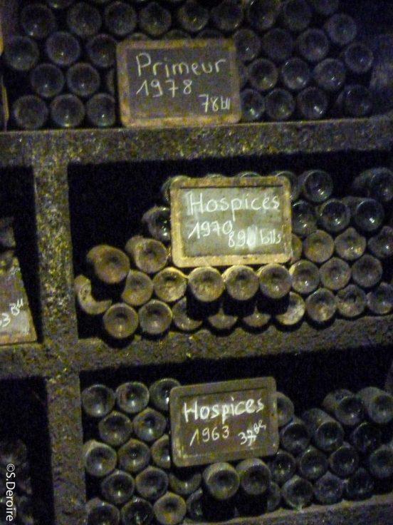 Terres des templiers Cave élevage vieux millesimes
