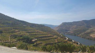 paysage-douro-terroirevasion-com