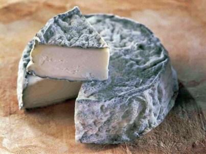 Selles_sur_Cher-AOP Fromage chèvre