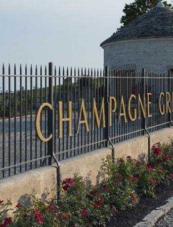 Gremillet Champagne Grille entrée