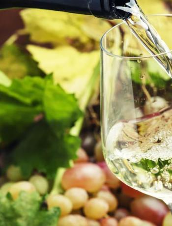 Vin blanc @5ph