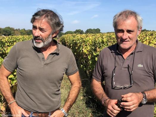 Vinsliquoreux de Bordeaux - Château Haut Bergeron - Patrick et Hervé Lamothe