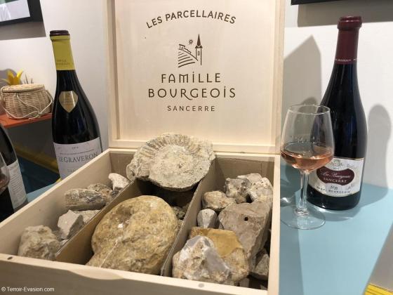 Famille Bourgeois - Sancerre - Les sols (calcaire, silex)