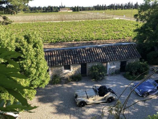 Domaine de l'Odylée - Voiture de collection et vignes