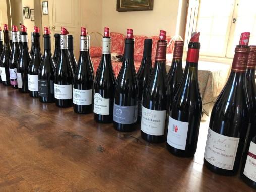 Saint Nicolas Bourgueil - Gamme vins