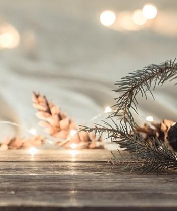 Menu Noël Farandole
