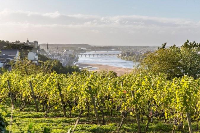 De Chanceny crémant de Loire - Vallée de la Loire