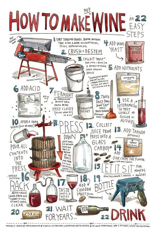 WOSA - How to Make Red Wine