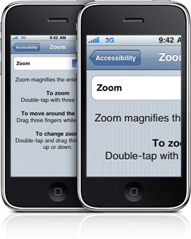 Accessibility Zoom
