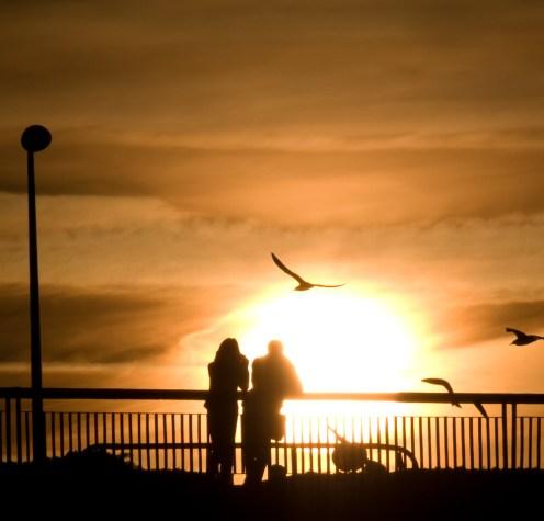 Birds at sunset, Bucharest, Romania