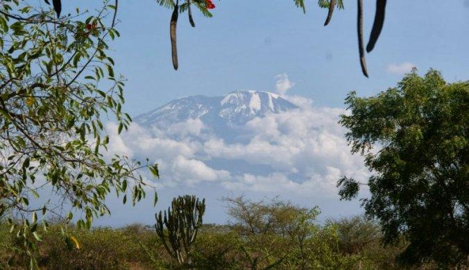 Kilimanjaro sneeuw in Afrika