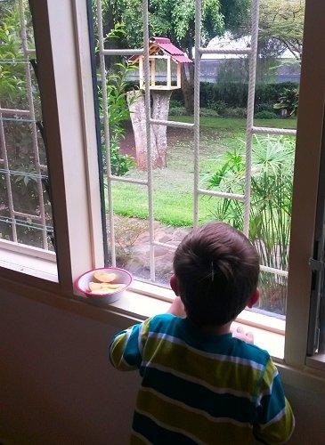 Julian op zoek naar apen in de tuin