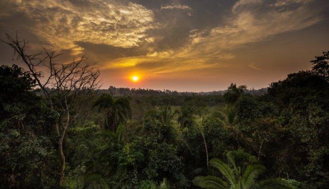 Zonsondergang over Kibale Forest in Oeganda