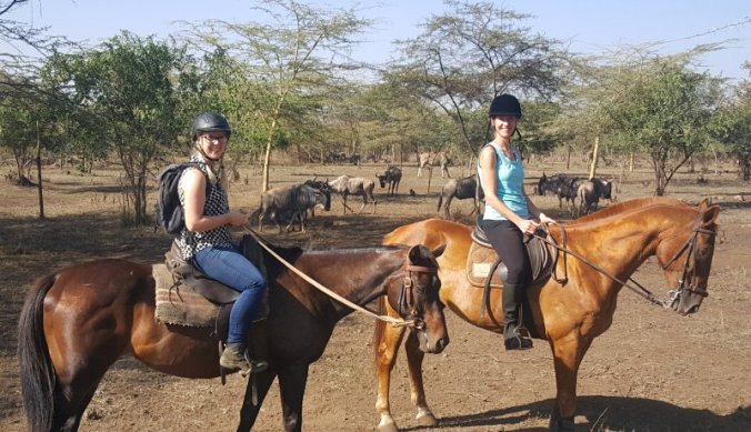Tanzania te paard, op Dolly Estate
