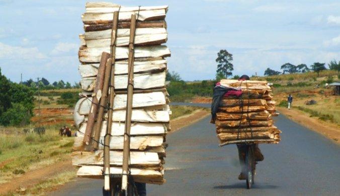 Lading brandhout op fiets vervoeren