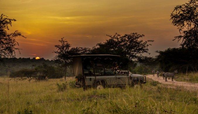 Op safari in Afrika