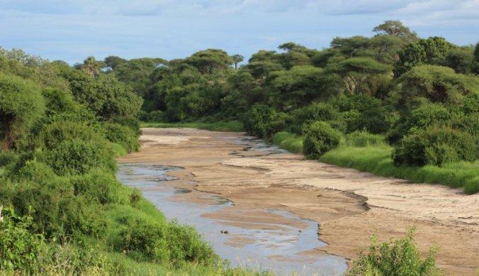Het prachtige landschap van Tarangire National Park