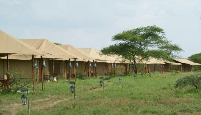 Safaritenten op een rij - Kenzan in Serengeti