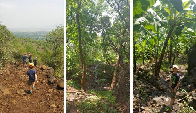 Natuurwandeling naar dorp Mto wa Mbu door tropisch bos en bananenplantage