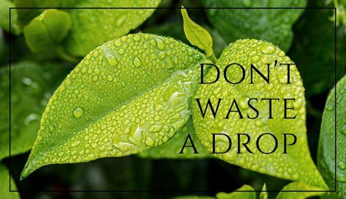 Don't waste a drop tijdens het regenseizoen en droogte in Afrika