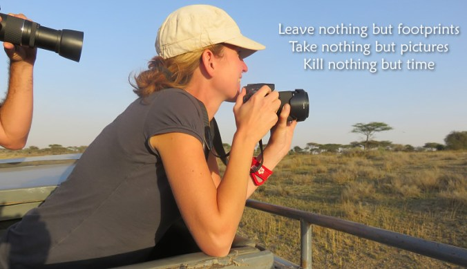 Take nothing but pictures from wildlife in Tanzania