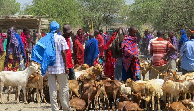 Markt Mto wa Mbu dingen wennen nooit Afrika