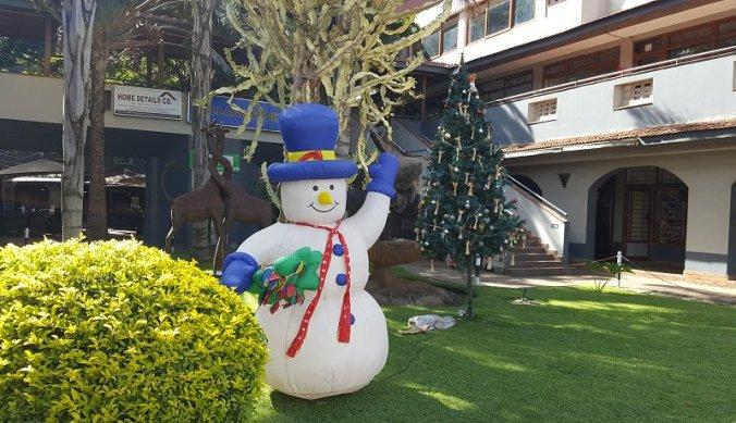 De sneeuwman en kerstboom in Arusha Tanzania