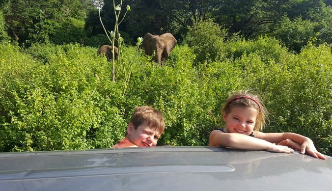 Olifanten bij Migombani Camp