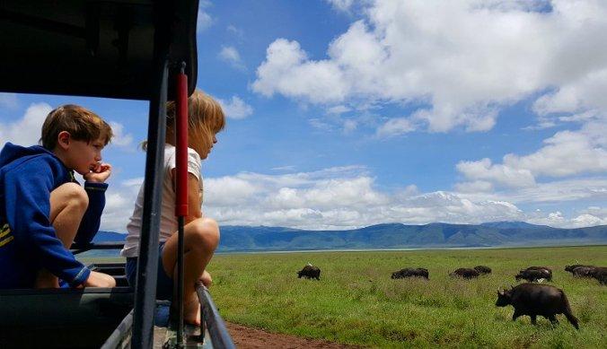 Zelf isolatie in de Ngorongoro krater
