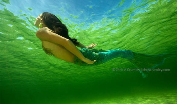 crumley mermaid underwater