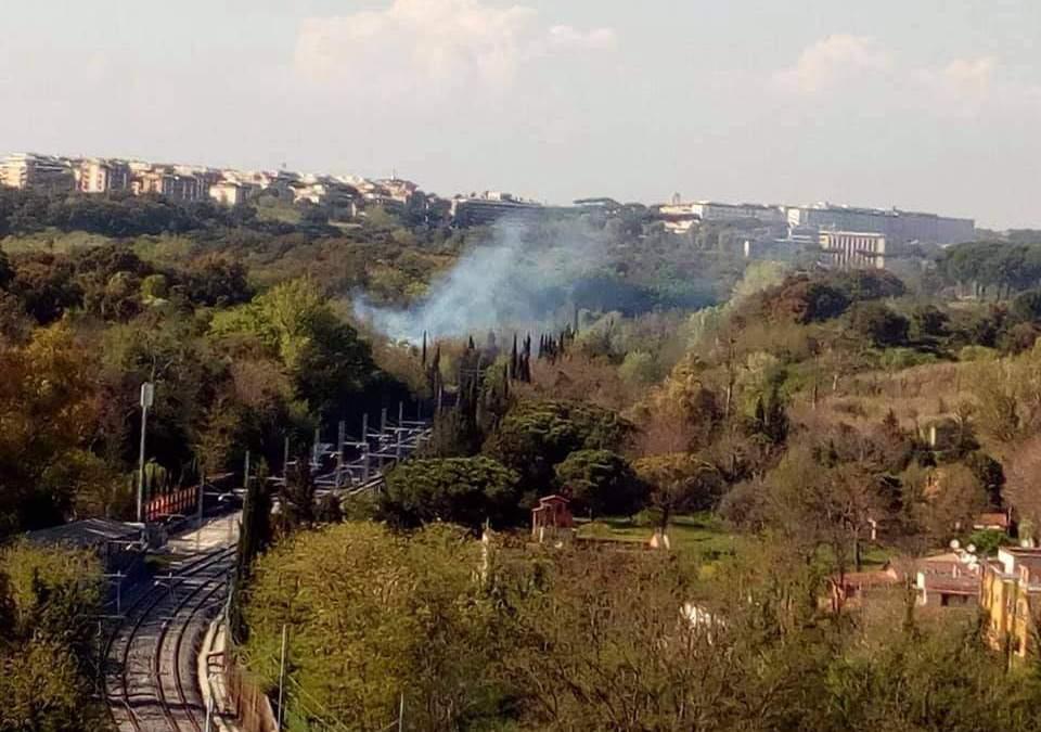 Incendio al Parco del Pineto, immediato l'intervento dei vigili del fuoco