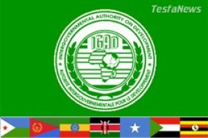 Ethiopia displaying its utter contempt for the other members of IGAD by refusing to abdicate the rotating chairmanship of the organisation