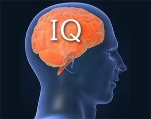 According to the 2014 IQ and the Wealth of Nations report