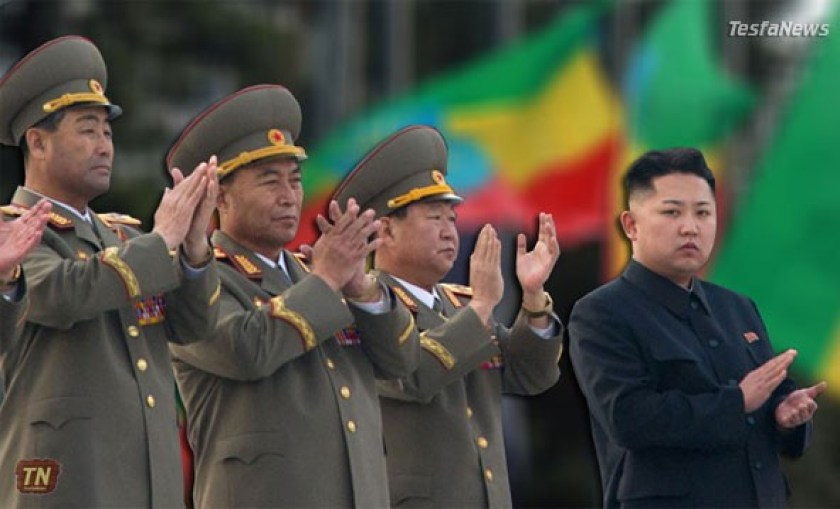 Current sanctions regime against North Korea prohobits Ethiopia from getting arms, technical training, advice, services or assistance