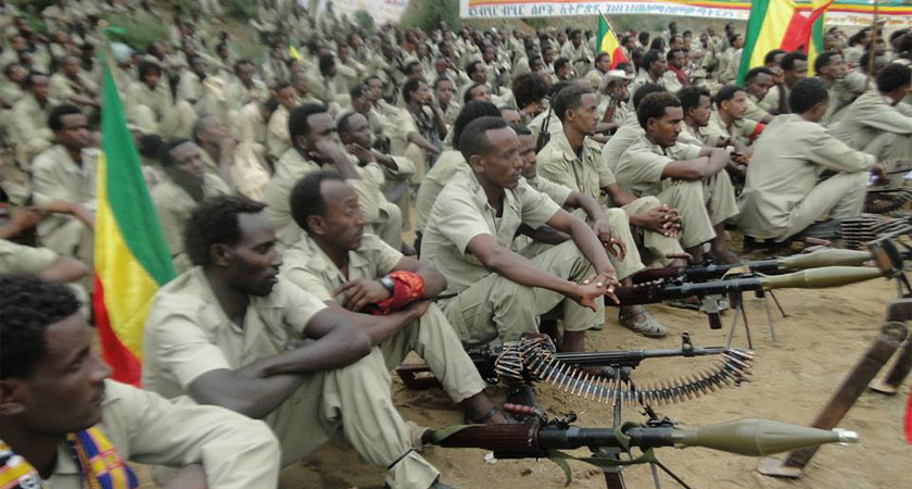 Ethiopia: Peaceful Protest to Armed Uprising