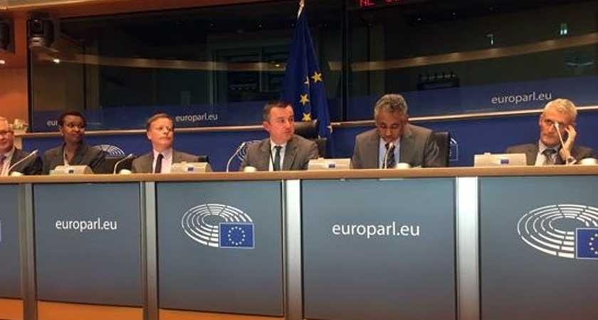 Future development of Eritrea EU conference