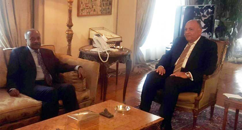 Egypt and Eritrea Foreign Ministers Discuss South Sudan, Regional Issues